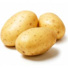 Картофель белый